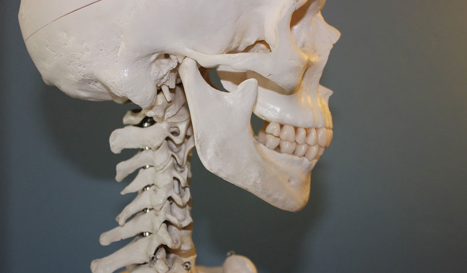 I've slipped a disc… in my jaw!